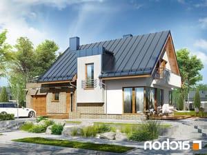 projekt Dom w amarylisach lustrzane odbicie 1