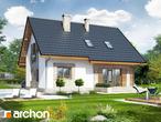 projekt Dom w lucernie Stylizacja 4