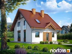 projekt Dom w poziomkach lustrzane odbicie 1