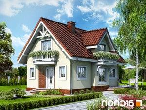 projekt Dom w antonówkach lustrzane odbicie 1