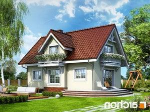 projekt Dom w antonówkach lustrzane odbicie 2