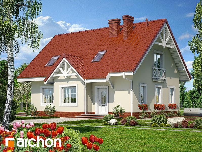 projekt Dom w groszku widok 1