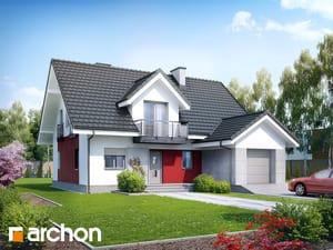 projekt Dom w kiwi (N)