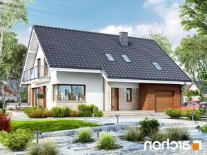 projekt Dom w idaredach lustrzane odbicie 1