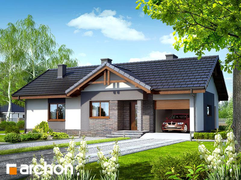 Projekt: Dom w nerinach ver.2 Wizualizacja widok 1