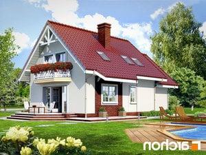 Projekt dom w ananasach ver 2  260lo