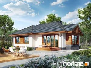 projekt Dom we wrzosach lustrzane odbicie 2