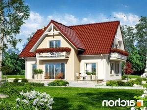 Projekt dom w fiolkach  260lo