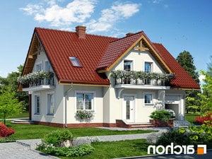 projekt Dom w fiołkach 3 lustrzane odbicie 1