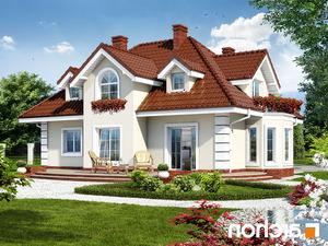 projekt Dom w wiciokrzewie lustrzane odbicie 2