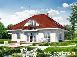 projekt Dom w arbuzach lustrzane odbicie 2