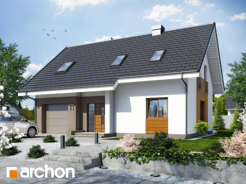 Projekt: Dom w limetkach ver.2 Wizualizacja widok 1