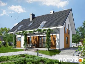 projekt Dom w limetkach lustrzane odbicie 2
