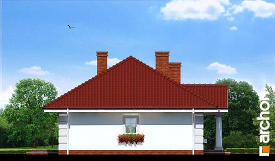 Elewacja boczna projekt dom pod jarzabem ver 2  266