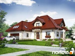 Projekt dom w nagietkach 3  252lo