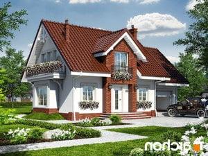 projekt Dom w lantanach 2 lustrzane odbicie 1