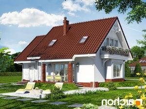 projekt Dom w lantanach 2 lustrzane odbicie 2