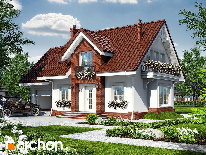 Projekt: Dom w lantanach 2 Wizualizacja widok 1