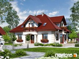 projekt Dom w jeżówkach 3 lustrzane odbicie 1