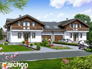 Dom w budlejach (B)