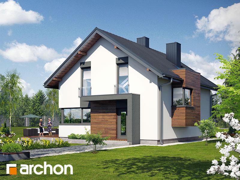 Projekt: Dom pod graviolą Wizualizacja widok 1