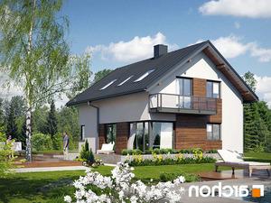 Projekt dom pod graviola  260lo