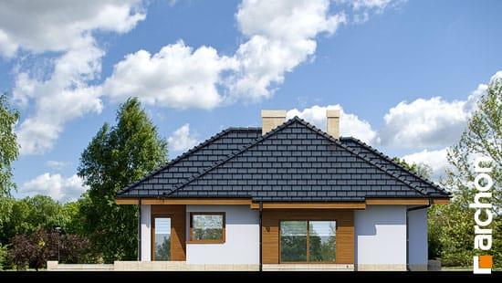 Elewacja boczna projekt dom w modrzykach  265
