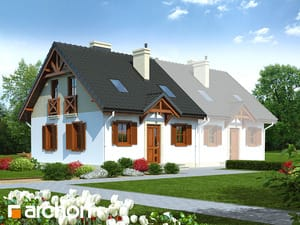 Dom w borówkach (B)
