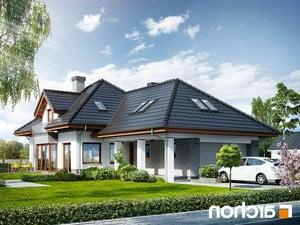 Projekt dom w sanwitaliach  252lo