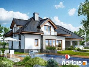 Projekt dom w sanwitaliach  260lo