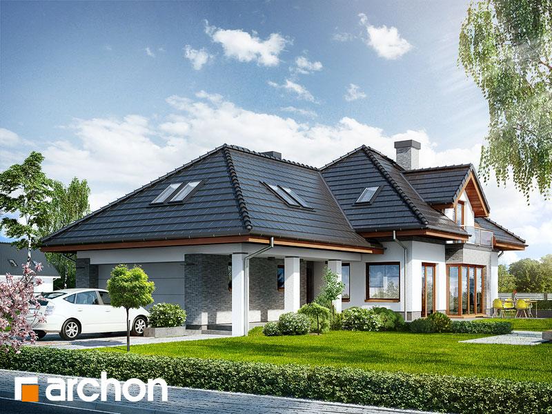 Projekt: Dom w sanwitaliach Wizualizacja widok 1