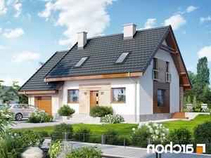 projekt Dom w filodendronach lustrzane odbicie 1
