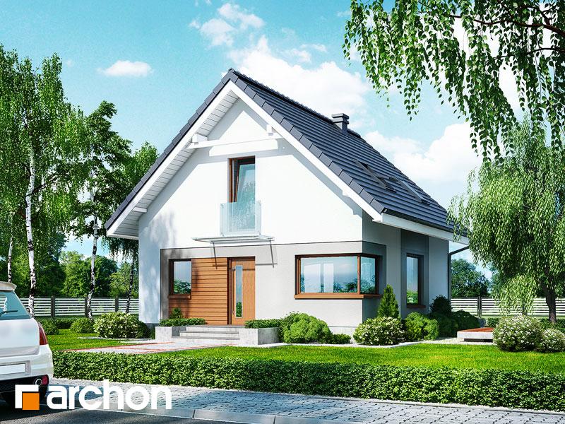 Projekt: Dom w rododendronach 11 (N) Wizualizacja widok 1