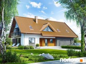 Projekt dom w goldenach  252lo