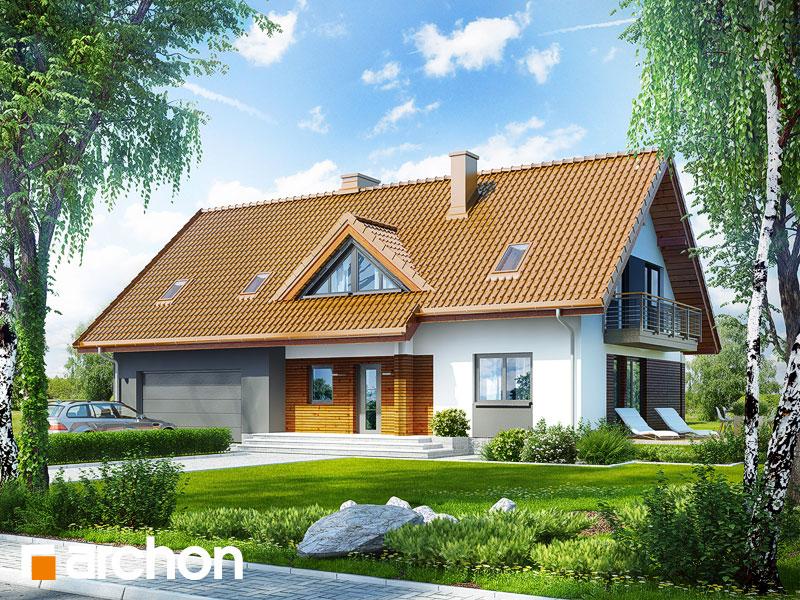 Projekt: Dom w goldenach Wizualizacja widok 1