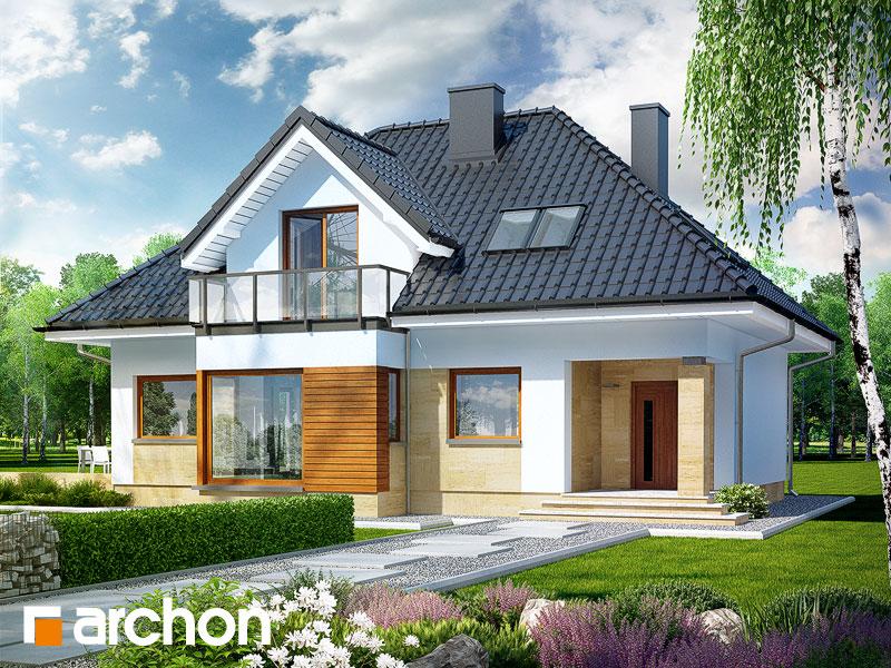 Projekt: Dom w awokado (N) Wizualizacja widok 1