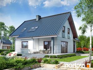 Projekt dom w milowonkach  260lo