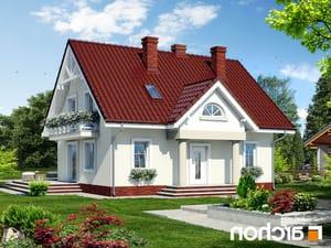 projekt Dom w truskawkach 2 lustrzane odbicie 1