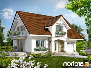 projekt Dom w asparagusach lustrzane odbicie 1
