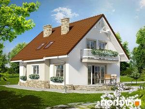 projekt Dom w asparagusach lustrzane odbicie 2