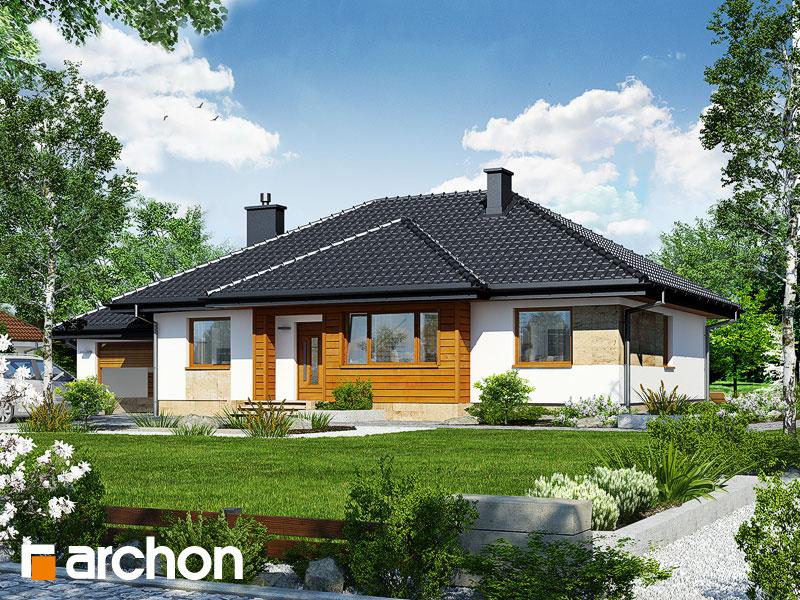 Projekt: Dom w akebiach ver.2 Wizualizacja widok 1