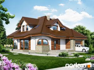 projekt Dom w zefirantach lustrzane odbicie 2