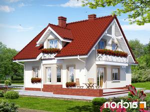 projekt Dom w rododendronach 2 (G2) lustrzane odbicie 2