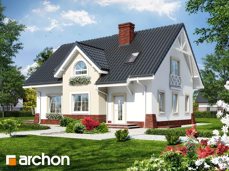 Projekt: Dom w groszku 4 ver.2 Wizualizacja widok 1