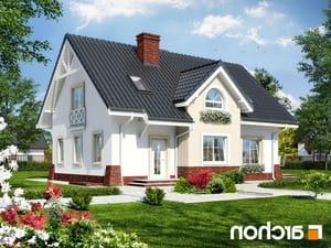 projekt Dom w groszku 4 lustrzane odbicie 1