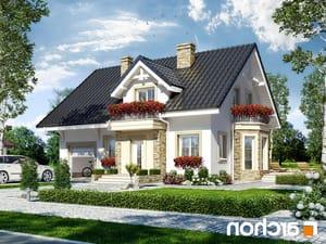 projekt Dom w rododendronach 14 lustrzane odbicie 1