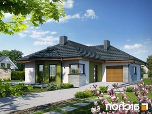 Projekt dom w powojach 2 ver 2  252lo