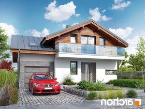 Projekt dom w budlejach ver 2  252lo