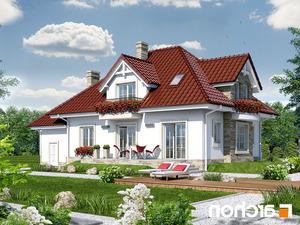 projekt Dom w kaliach lustrzane odbicie 2