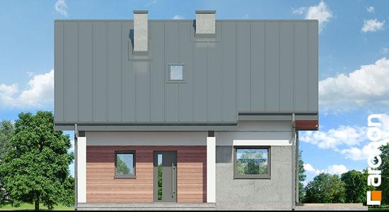 Elewacja frontowa projekt dom miniaturka n ver 2  264